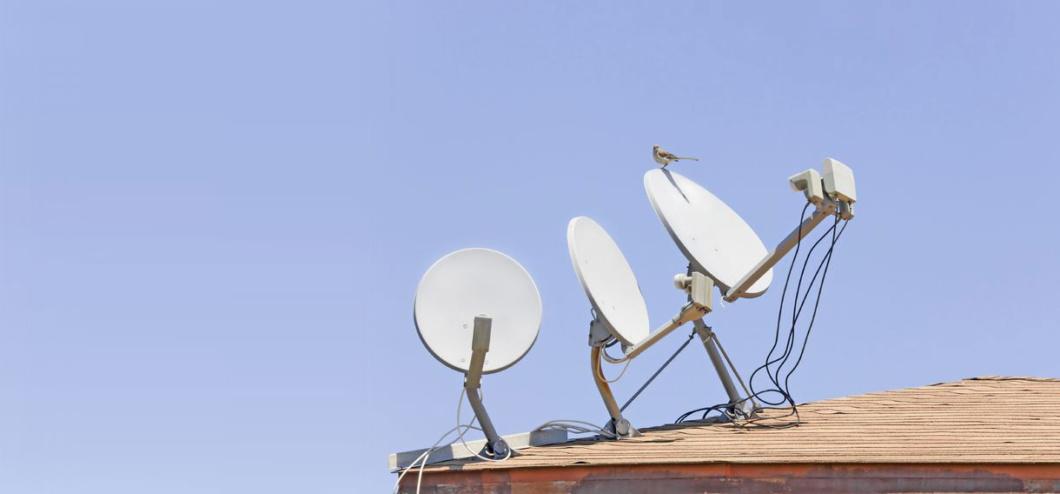 satellitenschüssel mit Spatz auf einem Dach